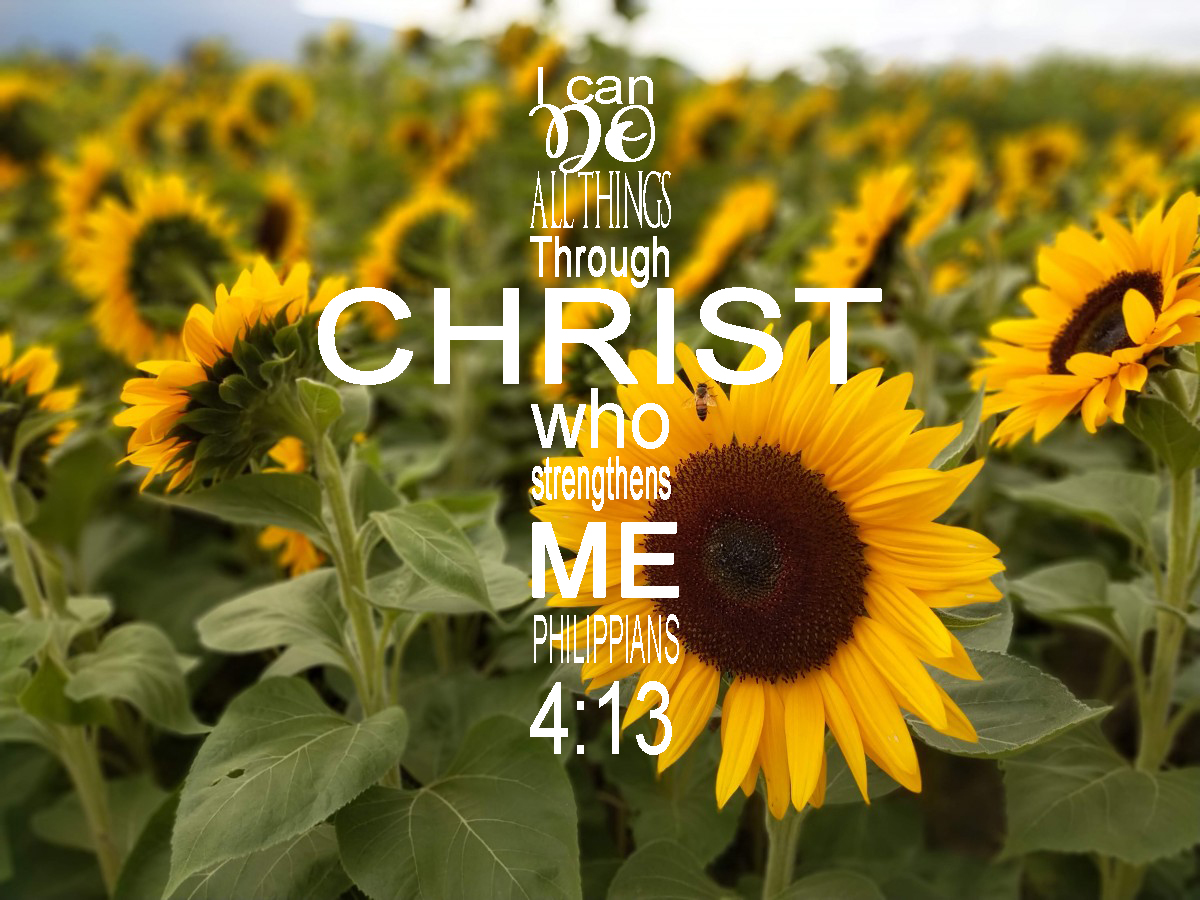 Verse of The Week Philippians 4:13: Group fitness, personal training, worriors